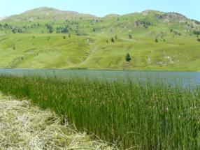 150575_2116_big_il lago prima del Colle della Maddalena 2